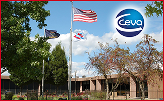 Ceva Externship Experience Receives Positive Feedback, Open to New Opportunities
