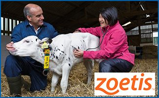 Zoetis: Taking a One Health Approach to Biosurveillance