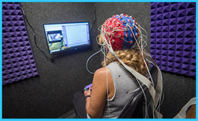 K-State Collaborates to Study Aging Brain