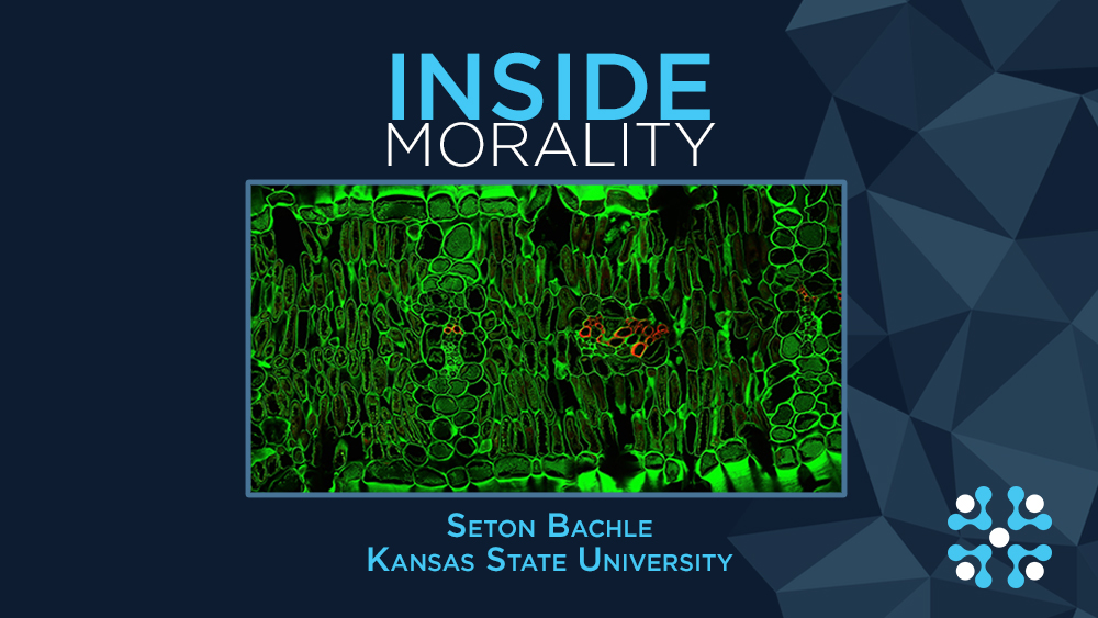 Inside-morality.jpg